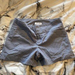 Blue Stripped Calvin Klein Shorts